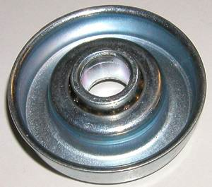 Conveyor Bearings for Rollers :: Side outside the roller