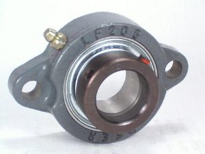 FHFD205-25mmG Flange Light Duty 2 Bolt Unit:25mm inner diameter: Ball Bearing